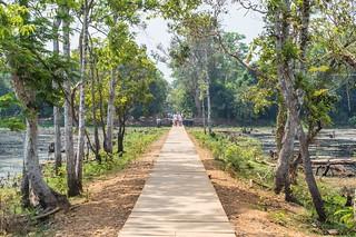 angkor - cambodge 2016 31