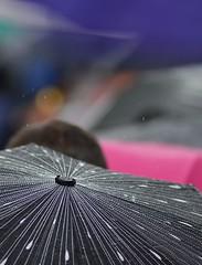schizzechea (robra shotography []O]) Tags: blur rain bokeh umbrellas drizzle ombrelli sooc af180mmf28 pioggerella