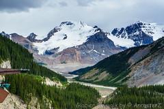 Glacier Skywalk (AncasterZ) Tags: skywalk rockies rockymountains glacier icefield mountain