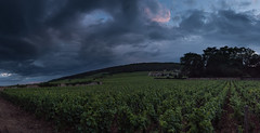 Pinkish Panorama (MrBlackSun) Tags: burgundy chevreychambertin bourgogne france wine vineyards vin nikon d810 panorama pano nikond810 landscape scenery nature sky clouds sunset dusk bluehour