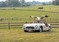 300SL (Vinfin Photography) Tags: mercedesbenz mercedes 300sl cars car
