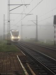 36WE-016 (Impuls) at Walbrzych Glowny (PL) (Marek Laszczka) Tags: impuls koleje dolnoslaskie newag 36we walbrzych fog