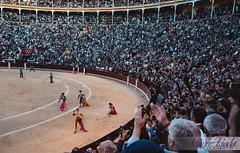 Spain-14 (CiclismoNY) Tags: wedding beer real spain ham bull almeria jamon palacioreal bullfighting palacio spainwedding sonya7r sonyfe55 sonyfe1635