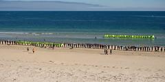 hands across the sand - 2015 - 5161459 (liam.jon_d) Tags: beach marine rally protest australian australia event oil waters sa bp southaustralia glenelg gab foreshore oilspill tws bight britishpetroleum wildernesssociety marinesanctuary joinhands greataustralianbight southaustralian beyondpetroleum billdoyle thewildernesssociety handsacrossthesand twssa oilfreeseas oilspillsr4eva twspeopleimset rallyingimset twsimset