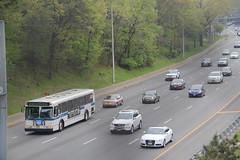 IMG_7548 (GojiMet86) Tags: mta nyc new york city bus buses 1999 orion v 6081 q50 whitestone expressway