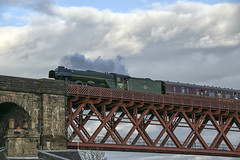 Flying Scotsman Crossing Forth Bridge (Colin Myers Photography) Tags: bridge man colin train photography scotland flying rail railway steam forth locomotive scots steamtrain myers forthbridge scotsman forthrailbridge flyingscotsman steamlocomotive 4472 forthrailwaybridge 60103 colinmyersphotography wwwcolinmyerscom flyingscotsmantrain