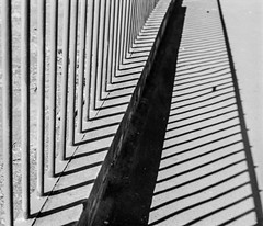 (Straight) Lines (DomiKetu) Tags: urban blackandwhite bw black film monochrome lines rollei mono blackwhite nikon f100 retro nikonf100 80s romania analogue rodinal sibiu urbex selfdeveloped homemadesoup parodinal blackwhitephotos