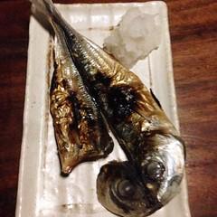 split, #salted #mackerel at our #favorite... (AndersonAndersonArchitecture) Tags: california favorite mackerel restaurant berkeley split salted ippuku uploaded:by=flickstagram instagram:photo=9763633506165256031287363409 instagram:venuename=ippuku instagram:venue=135102