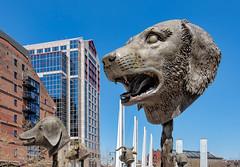 Public Art in Boston (marypink) Tags: sky sculpture usa boston architecture bronze pov massachusetts newengland publicart animalheads nikond800 nikkor1635mmf40