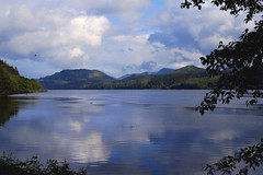 Utopia (charhedman) Tags: trees sky mountains water clouds reflections vancouverisland capescottprovincialpark holberg holberginlet scarletibispub