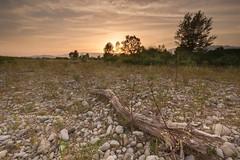 Desert Summer (Ag-NO3 Angelo Sampino) Tags: landscape paesaggio sunset tramonto water acqua tronco cielo sky nature natura piave fiume river moriamo treviso veneto italia italy nikon d700 agno3  angelo sampino sassi pierte stones
