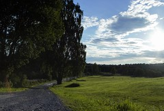 Golf (oysteinha) Tags: nature landscape norway sun blue skies clouds cloud grass water road river leaves trees tree olympus pen mini voiglander prime lens epm1 sunset late nice light reflections reflection contrast sharp manual focus