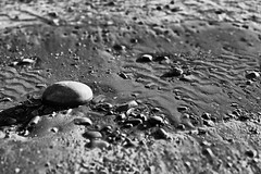 Painted in grey (Mario Ottaviani Photography) Tags: stones rocks painted gray grey grigio sassi pietre fotodiox canon sony beach shore sea seascape biancoenero bianco nero black white blackandwhite bw bn monocromo monochrome sonyalpha