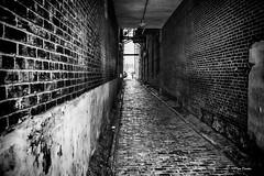 Streets of Philadelphia (Igor Danilov Philadelphia) Tags: alley philadelphia streets bw mono passage nikon d700 f56 1200sec iso3200 noflash 28mm filbertstreetalle 3rdstreet filbertstreetallephiladelphia filbertstreetalleyat35nthirdstreetphiladelphia