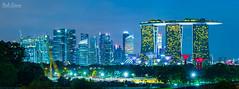 Expanding the Garden City (hak87) Tags: city trees gardens by skyline marina bay construction singapore crane super sands barrage