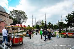 Aya Sofya11-0488erw (Luciana Adriyanto) Tags: travel turkey istanbul museum ayasofya hagiasofia flowers v1olet lucianaadriyanto