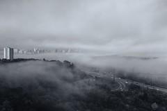 (marina~) Tags: fog toronto morning canon ontario city urban broadview bw