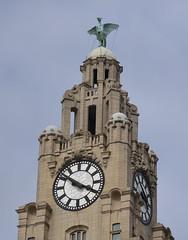 Royal Liver Building (lcfcian1) Tags: royal liver building royalliverbuilding liverpool architecture tower liverbird bird clock face clockface