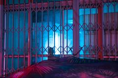 Portal (elsableda) Tags: night chinatown johannesburg joburg jozi neon southafrica lights light shadow fridge reflection dystopia dystopian cyberpunk futuristic retrofuturism