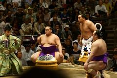 日馬富士 画像44