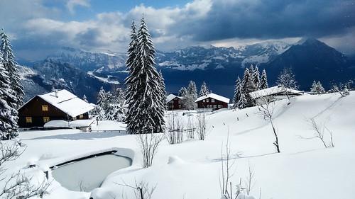 Snowy Rigi