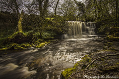 Crackpot Falls (Lee Summerson) Tags: longexposure trees sunlight green water canon waterfall moss yorkshire 7d dales slowshutterspeed crackpotfalls eos7d hoyandx400 milkywaterfalls