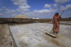 Agariyas of Dharasana (Neha & Chittaranjan Desai) Tags: movement workers salt pan gujarat gandhiji valsad dharasana