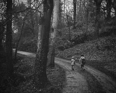 Off on an adventure [Pen EE] EXPLORE (Mr B's Photography) Tags: trees blackandwhite bw girl children woods path olympus helston agfavista loebar penee