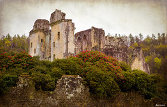 Ruins of Old Wardour Castle. (_Anathemus_) Tags: old uk england castle robin movie spring nikon ruins kevin moody d750 hood wiltshire costner oldwardourcastle wardour 2470mm princeofthieves