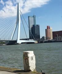 Rotterdam op z'n mooist. (sanneveth) Tags: rotterdam maas erasmusbrug nofilter rotterdamzuid wereldmuziek
