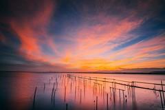 Fiery Sky /  (Cheng-Yang, Chen) Tags: sunrise canon dawn wideangle wetlands taichung 6d   gaomei  ef1635mmf4lisusm