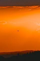 Last hunter before sunset (Englepip) Tags: sunset orange silhouette landscape glow outdoor hampshire layers birdofprey englepip idealphonewallpaper