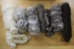 Second Pass (chavala) Tags: knitting spinning batts batts2016