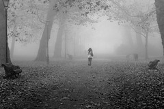 Fog Walk (Torsten Reimer) Tags: park uk trees england blackandwhite mist london fog walking europa europe nebel unitedkingdom path gb benches battersea wandsworth batterseapark schwarzweis