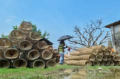 Monsoon fishing equipment (ashik mahmud 1847) Tags: bangladesh d5100 nikkor market traditional fishinggear people umbrella sunny day man sky blue tree