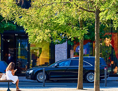 Frankfurt City (Cyclefan) Tags: lovelycity frankfurt hessen germany deutschland bume trees strase licht light luz arbol street 50mm