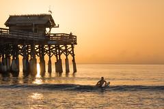 She loves the ocean - Cocoa Beach, FL (ChuckPalmer {cepalm}) Tags: brevardlife cocoabeach sunrise beach chuckpalmer girl surfing