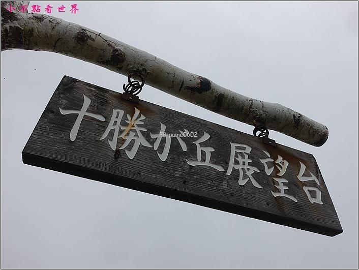 十勝之丘展望台 (1).JPG