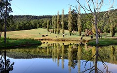 155 Tallowa Dam Road, Kangaroo Valley NSW