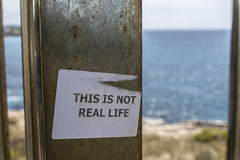 This is not real life (Sarah G Parkyn) Tags: life beach real words quote walk sydney australia explore thisisnotreallife