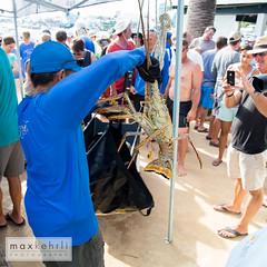 IMG_4253 (Max Kehrli) Tags: waves tournament lobster bermuda annual makin 2014 makinwaves