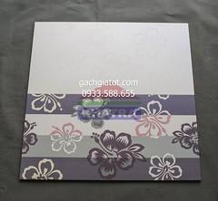 Gạch ốp tường hoa bằng lăng tím 2 (30x60)