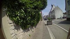 Rheinmünster Löwenherz