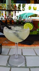 Margarita (AlfredoZablah) Tags: travel traveling photography light live vacation yellow beach tour landscape art bird birds fashion family fun garden macro old classic sea trip surf surfers waves sunday sunny miami florida bahamas norwegian crucero cruise sky babes brazileñas brazilians belize belizean roatan honduras ambegris ambergis cailker caye cayo key bikinis natura delfines dolphins nadando olympus reflex uro e510 zuiko digital 70300mmed modelos playas sol arena flickr flickrs kids smile dog perro shihtzu paparazzi