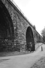 Northwich Viaduct (ajoliver_56) Tags: bridge blackandwhite monochrome nikon noir cheshire transport structure northwich noire ajoliver56
