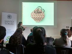 Negrete tu puedes - Voluntarios Servicio País - Biobío - 2015