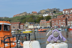 Monkey Up North - Whitby (monkey_pgtips) Tags: castle abbey monkey yorkshire lincolnshire whitby scarborough lyveden