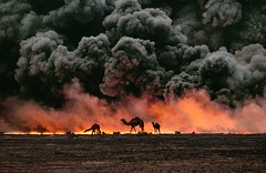 kuwait-10001 (Found Art) Tags: orange cloud black field animal animals yellow horizontal clouds landscape outside outdoors fire persian al war exterior gulf destruction smoke flames gray wells well burning flame camel burn oil fields conflict 1991 kuwait dust soot dying fires camels burned plumes plume ahmadi alahmadi 532803 kuwait10001