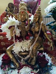 Uma–Maheshwar murti (Ervins Strauhmanis) Tags: flowers white flower statue bronze worship goddess uma lord latvia pooja ritual shiva siva chrysanthemum puja deity lv shakti parvati devi murti sati rīga shakthi parvathi maheshwari maheshwar sathi maheswara rīgaspilsēta shakticenter