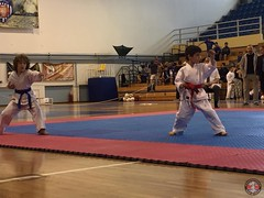 stefanou_15_5_2016_knockdown_49